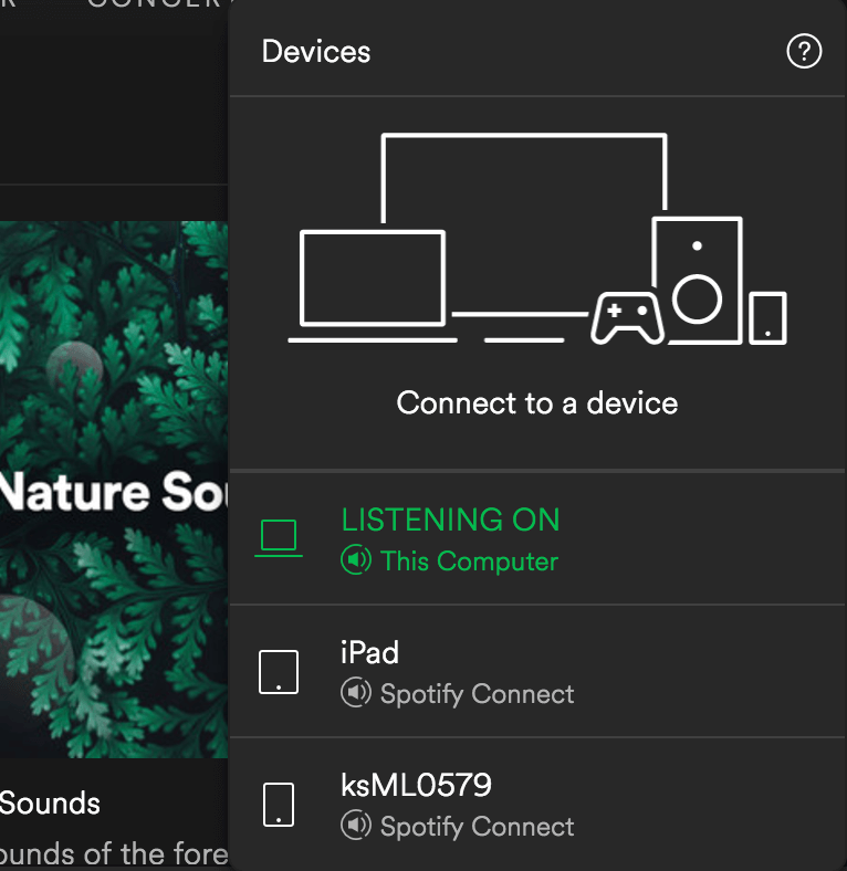 Spotify_Review_Seamless_Playing