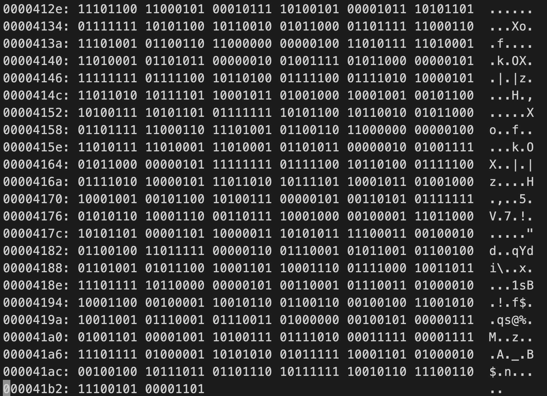 Example of Machine Code in Binary